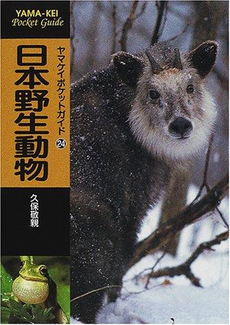 日本野生動物 (ヤマケイポケットガイド (24))の詳細を見る