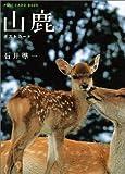山鹿ポストカード (新風舎文庫―Post card book)