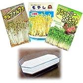 もやし(スプラウト):3種栽培セットA(ブロッコリー、ブラックマッペ、アルファルファ)[タネ 小袋][大容器]