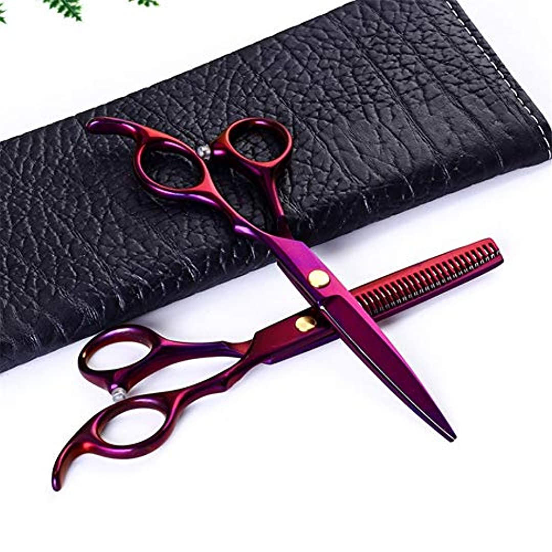 理髪はさみメッキパープルシャープスタイリングカミソリ髪はさみカッティングシザーシニングシザーとくし6.0 in