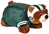 [ファブリークイノベーション]Fabrique Innovations NFL New York Jets Dream Lite Pillow Pet 5100DLNYJ [並行輸入品]