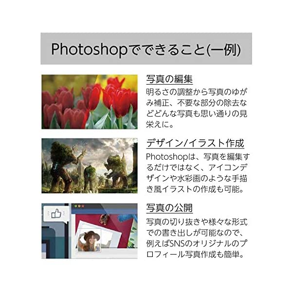 Adobe Photoshop CC|12か月...の紹介画像4
