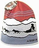 アラスカビーニー帽子スカルSled Dogチームニットストッキング帽子