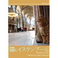 猫とイスタンブール