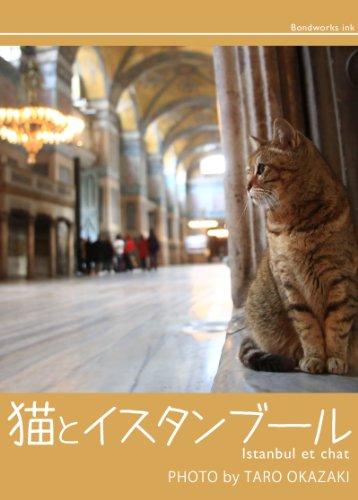 猫とイスタンブール 岡崎太郎