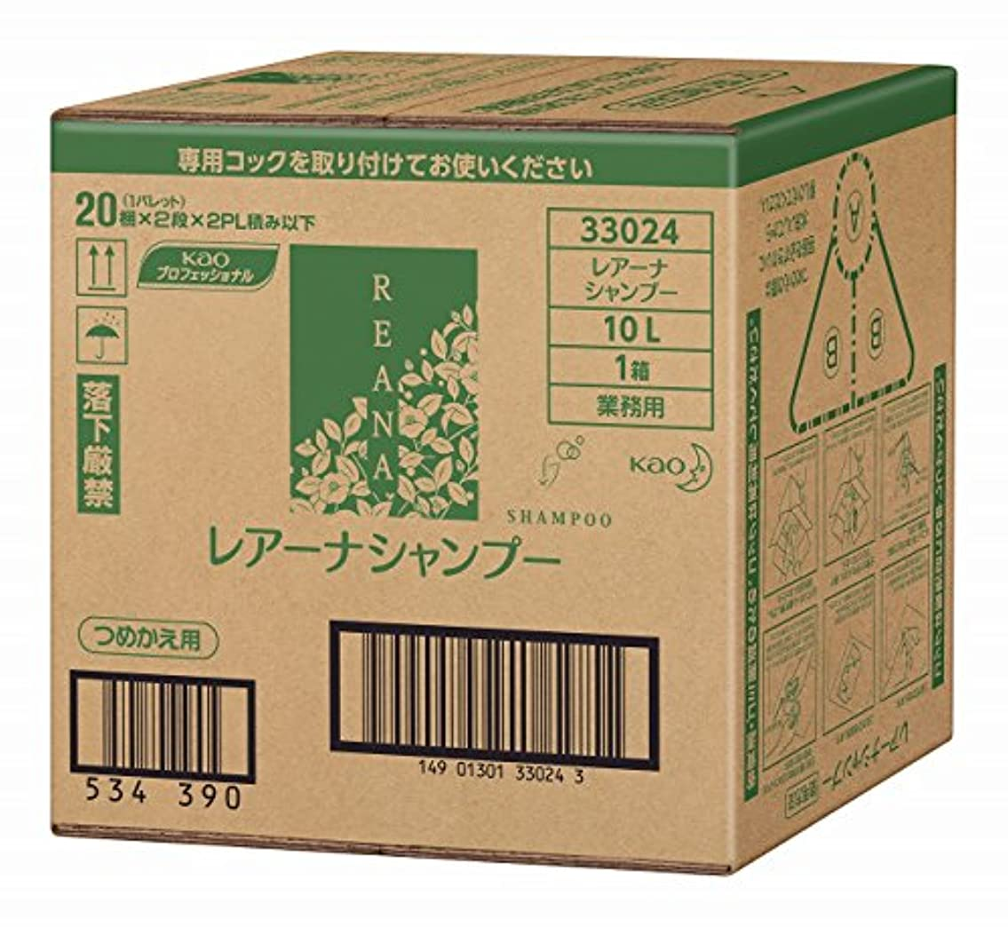 野球ゾーン専ら花王 レアーナ シャンプー 10L