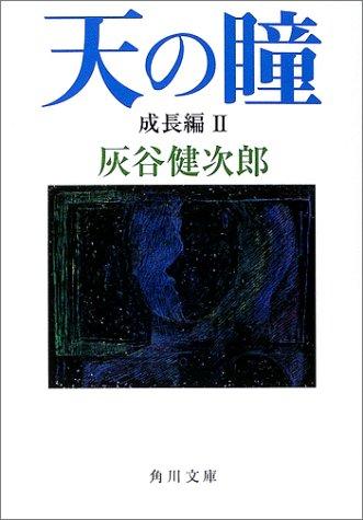 天の瞳 成長編II (角川文庫)