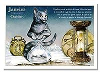 フランス製 キャットポストカード (Javier-Chablier) CPK081