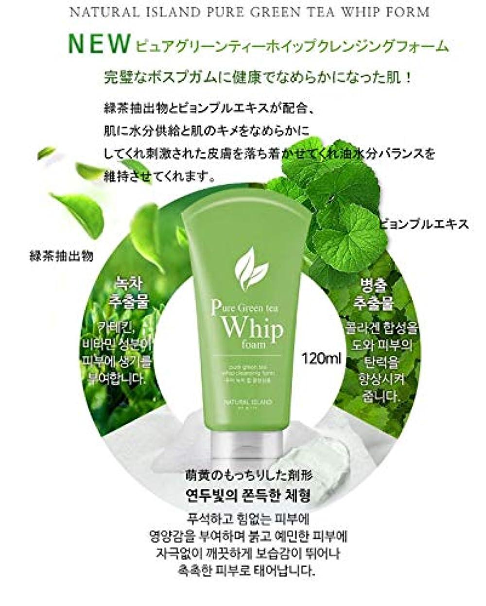 バスルーム芸術的メールNATURAL ISLAND CLEANSING FOAM カスタムクレンジングフォーム Pure Green Tea
