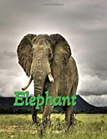 Elephant Lined Journal Note Book