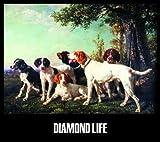 Grand Gallery Presents DIAMOND LIFE