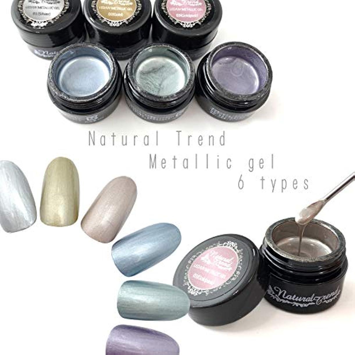 陽気なインポート持続的NaturalTrend メタリックジェル 6色カラー メタリックカラージェル メタリック (01,Silver)