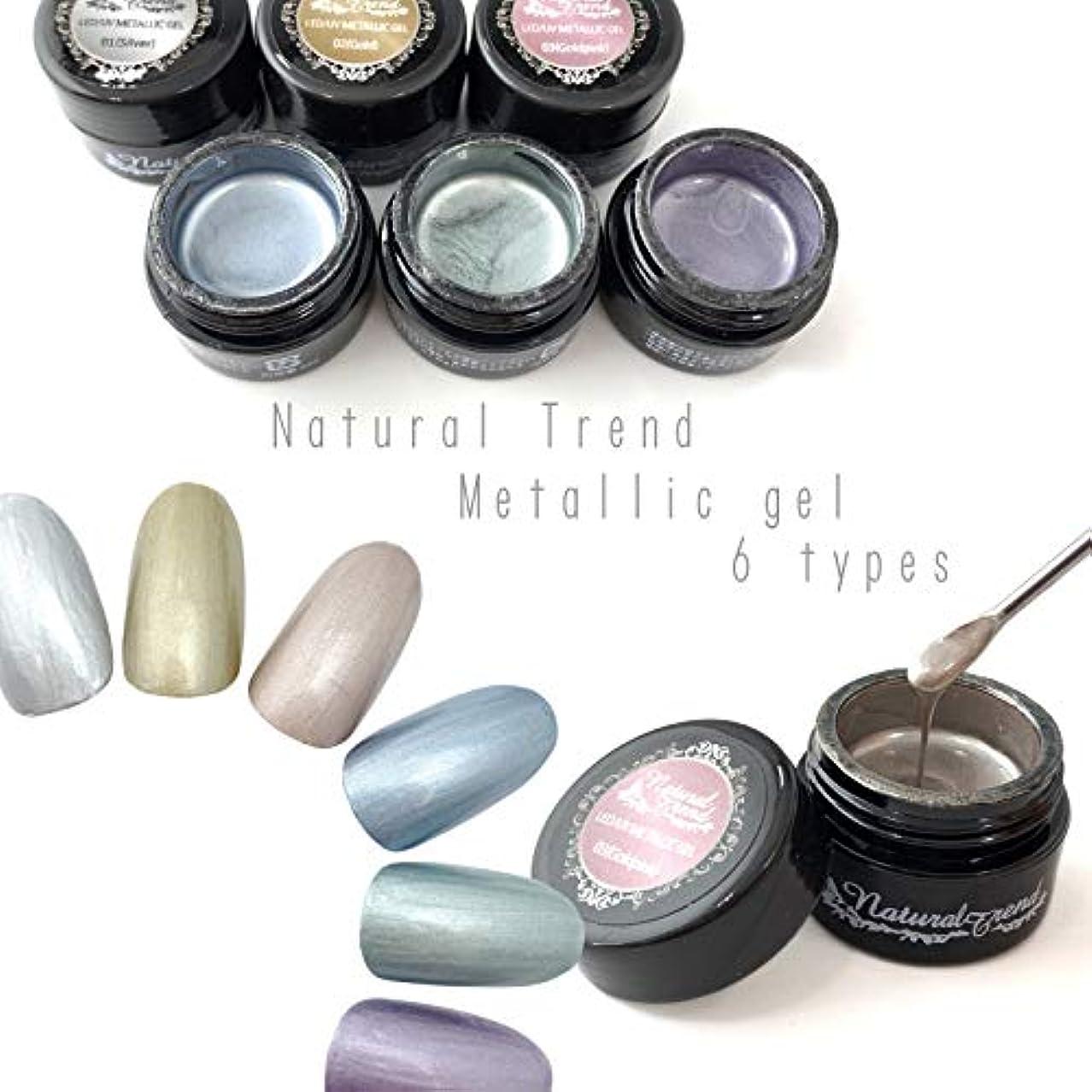 素敵な放棄された好みNaturalTrend メタリックジェル 6色カラー メタリックカラージェル メタリック (01,Silver)