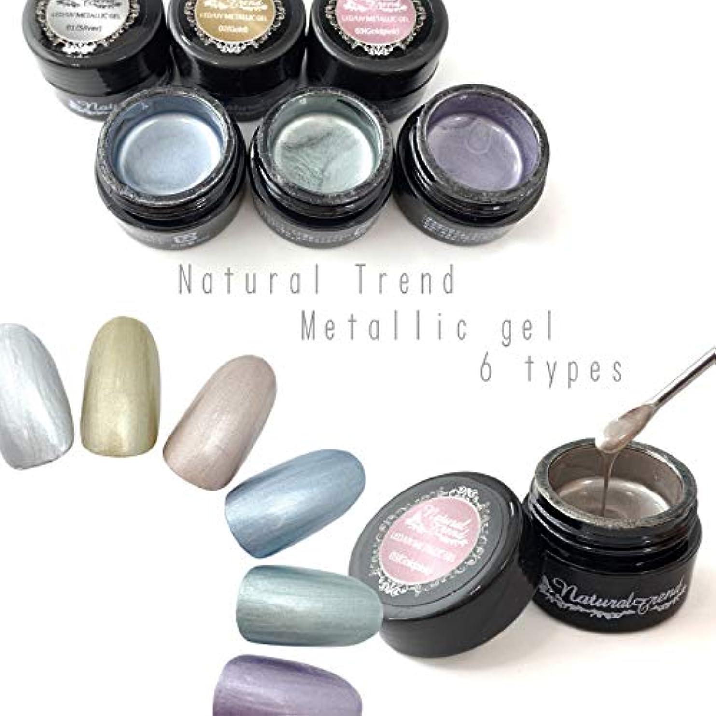 本質的ではないナチュラタービンNaturalTrend メタリックジェル 6色カラー メタリックカラージェル メタリック (01,Silver)