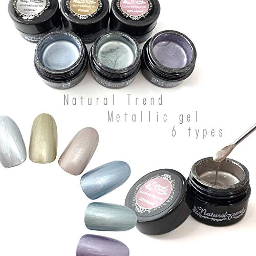 寄託ラジウム染色NaturalTrend メタリックジェル 6色カラー メタリックカラージェル メタリック (05,AshGreen)