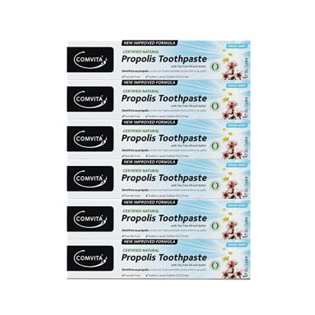 洗練輸血不正100% ナチュラル プロポリス 歯磨き粉 6個セット PROPOLIS TOOTHPASTE PACK 100g x 6ea [並行輸入品]