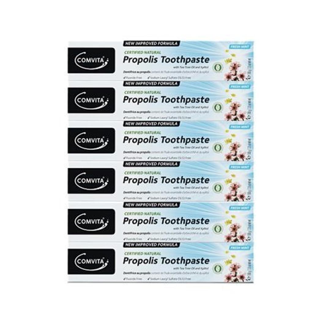 添加剤家主印象的100% ナチュラル プロポリス 歯磨き粉 6個セット PROPOLIS TOOTHPASTE PACK 100g x 6ea [並行輸入品]