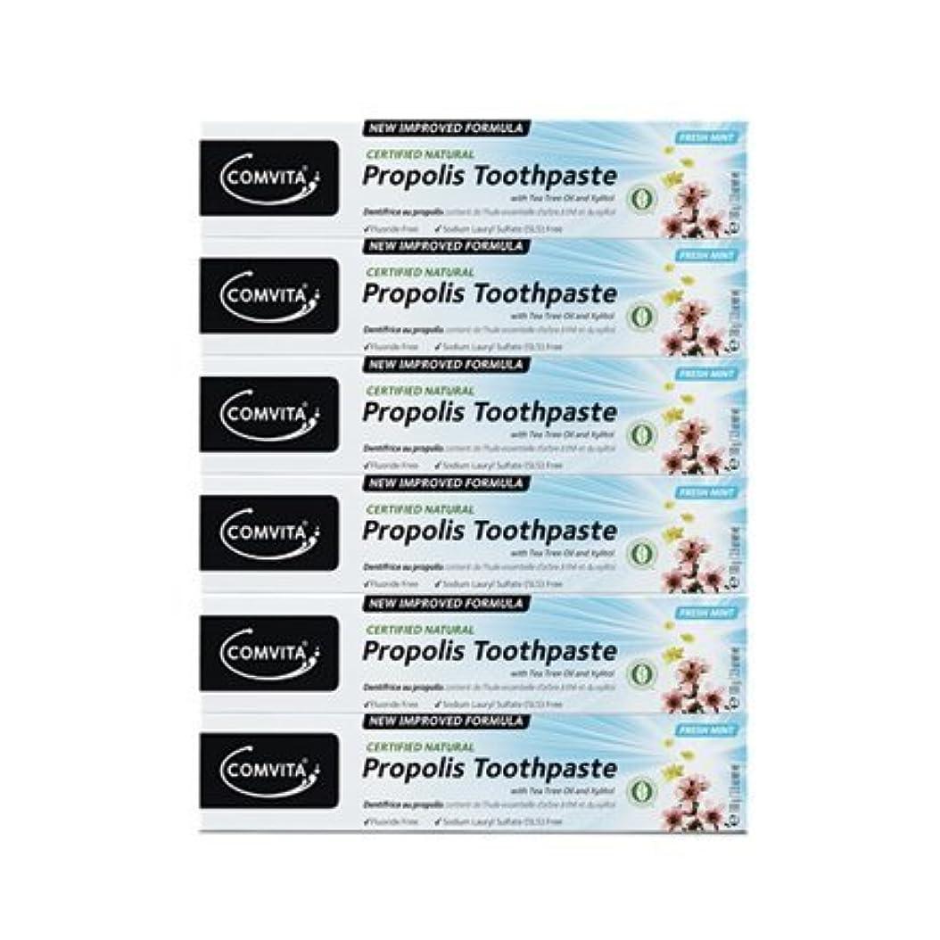 アレイベリ適性100% ナチュラル プロポリス 歯磨き粉 6個セット PROPOLIS TOOTHPASTE PACK 100g x 6ea [並行輸入品]