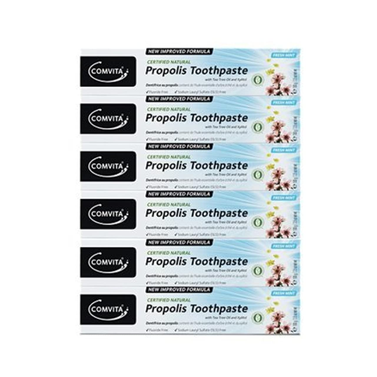メトロポリタン代数的熟した100% ナチュラル プロポリス 歯磨き粉 6個セット PROPOLIS TOOTHPASTE PACK 100g x 6ea [並行輸入品]