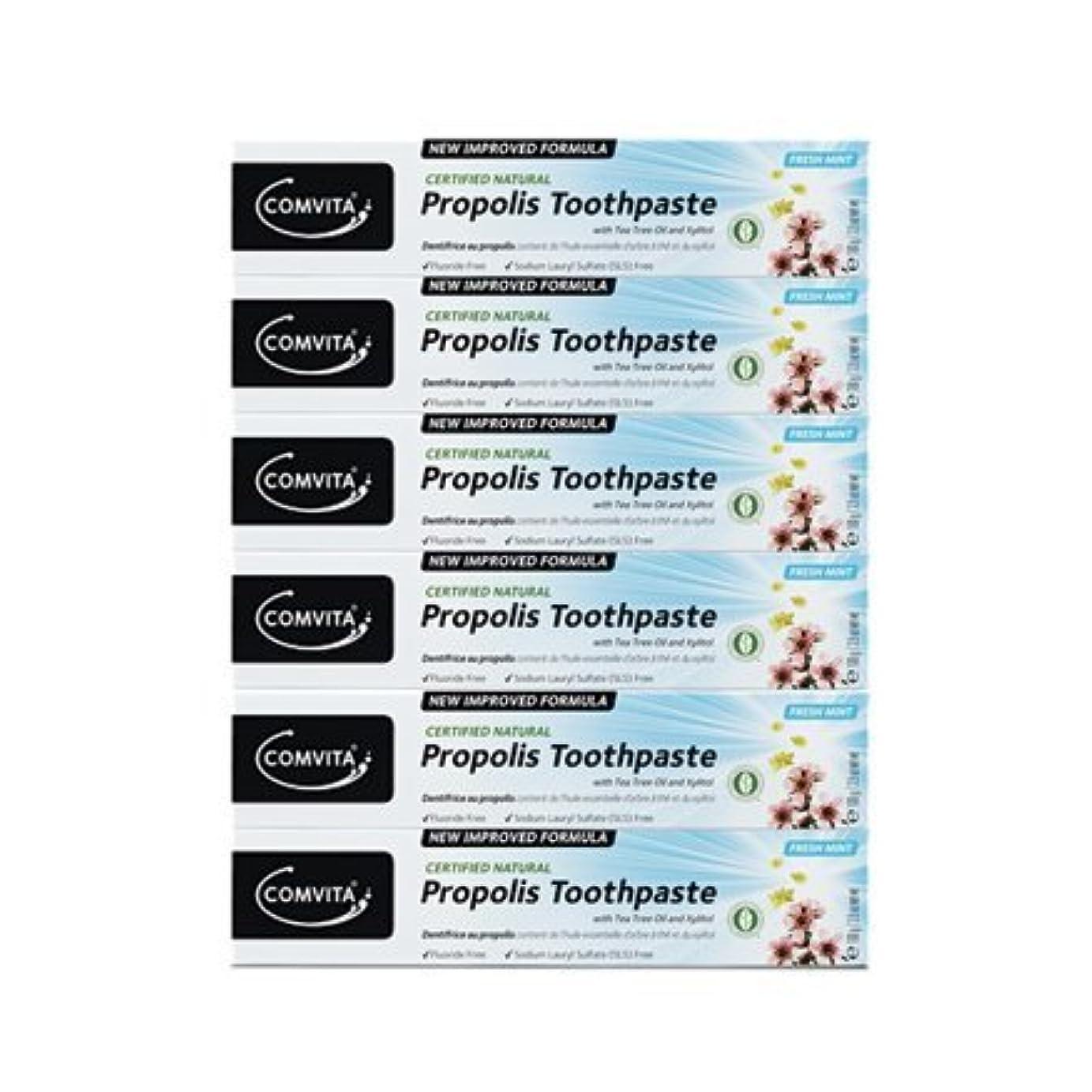 絶え間ない形施設100% ナチュラル プロポリス 歯磨き粉 6個セット PROPOLIS TOOTHPASTE PACK 100g x 6ea [並行輸入品]