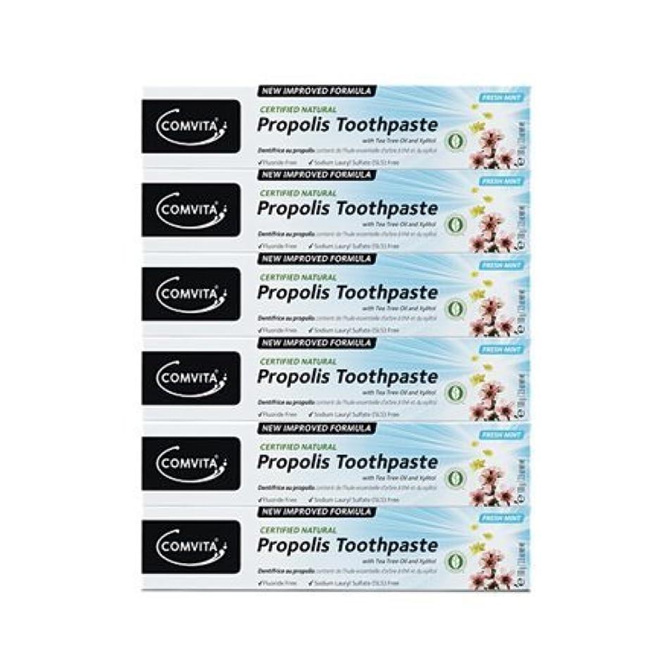 精巧なクリーム教授100% ナチュラル プロポリス 歯磨き粉 6個セット PROPOLIS TOOTHPASTE PACK 100g x 6ea [並行輸入品]