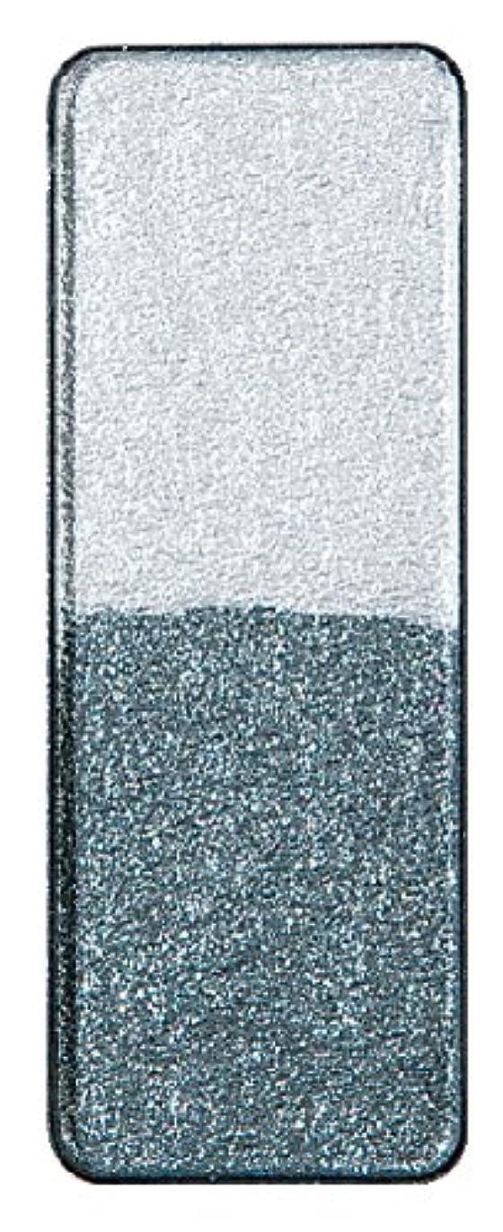 疎外する筋呼吸ヴィザージュ ツインカラー 1101プラチナシルバー/ナイトグレー