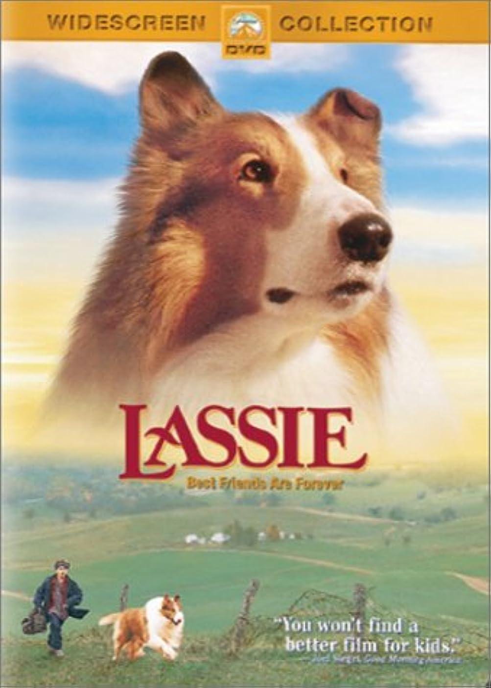 適度なカバー虐殺Lassie