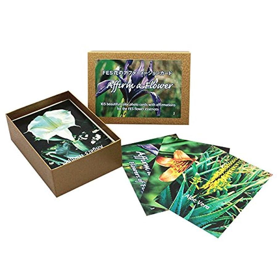 粘性の狂乱サンダルFESフラワーエッセンス/その他[アファーメーションカード全103枚(日本語版)]