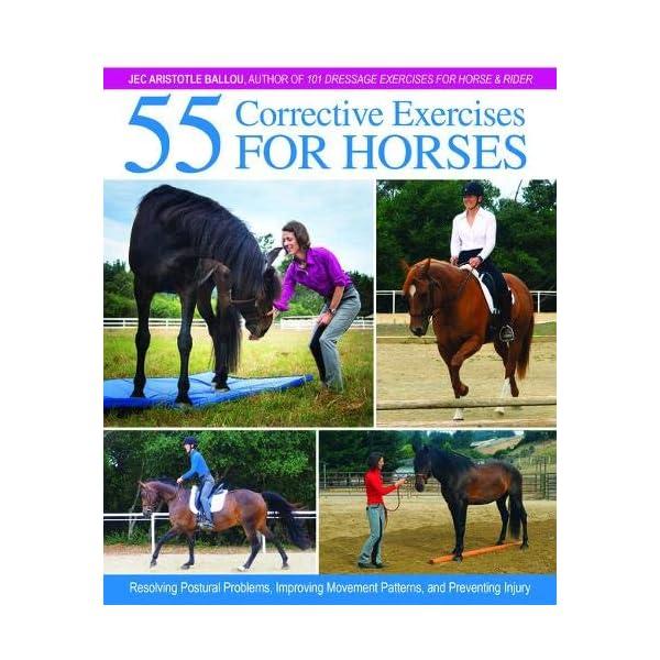 55 Corrective Exercises ...の商品画像