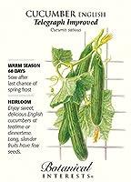 英語の電報改良キュウリ - 20種 - 植物学的興味