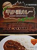 甲子園球場特製 甲子園カレー 中辛 2食入り 2個セット