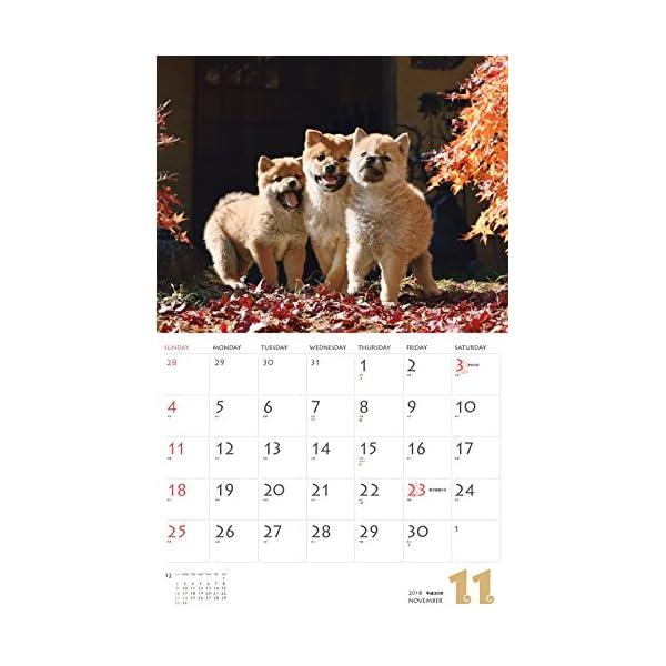カレンダー2018 柴犬 (ヤマケイカレンダ...の紹介画像13