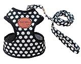 Rant Bell(ラント ベル) 小型犬 ハーネス リード セット ドット柄 かわいい 肉球 (黒 L)