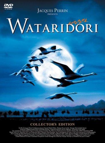 WATARIDORI コレクターズ・エディション [DVD]の詳細を見る