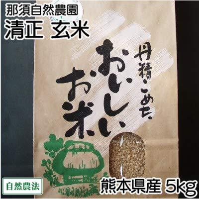 【8月19日配送再開】[30年度産] 清正 玄米5kg 自然農法 (熊本県 那須自然農園) 産地直送 ふるさと21