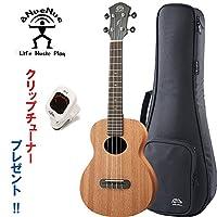 aNueNue Rainbow Ukulele/aNN-TM2 アヌエヌエ・コンサートウクレレ ・トップ単板/オールマホガニーボディ|クリップチューナー・プレゼント!