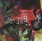 秘すれば花(初回限定盤B)()