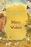 Many Waters (Madeleine L'Engle's Time Quintet)