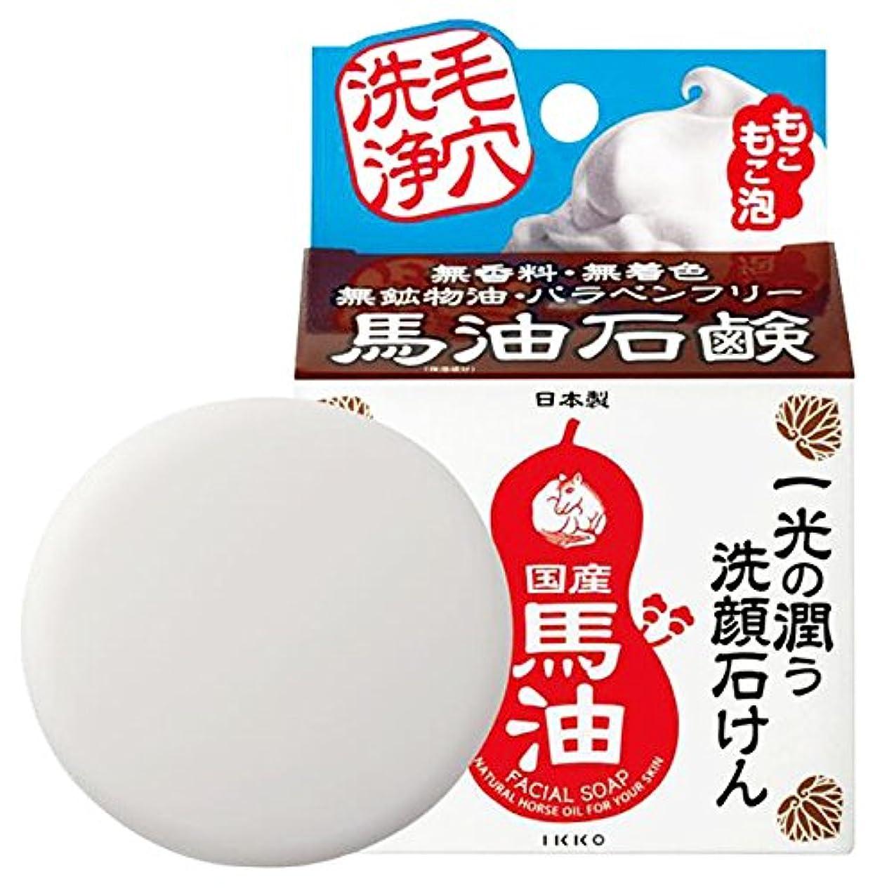 実用的生きている気楽な一光化学 一光洗顔石けん(さっぱりタイプ) 80g