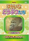 ゆかいなどうぶつたち -ゴリラ・サル・チンパンジー- [DVD]