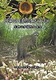 沖縄の自然は大丈夫?―生物の多様性と保全 (シリーズ「知の津梁」琉球大学ブックレット)