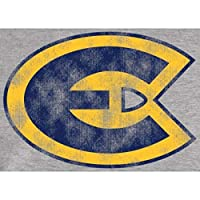Fanatics Branded Wisconsin Eau Claire Blugolds Ash Big & Tall Classic Primary Pullover Hoodie スポーツ用品 5XT 【並行輸入品】