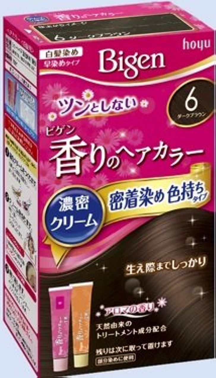 インディカ実験的省ビゲン 香りのヘアカラー クリーム 6 ダークブラウン × 27個セット