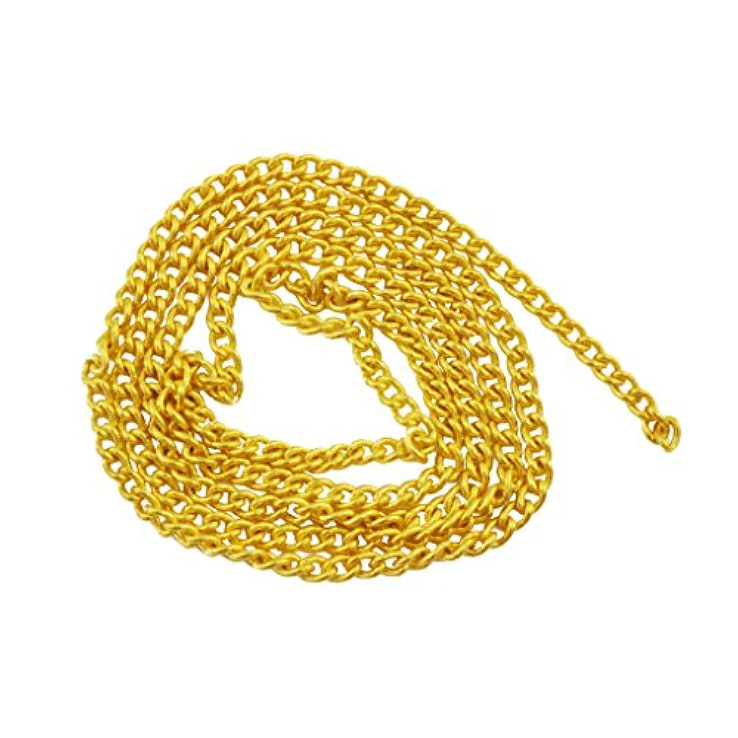 反映する前任者原油ネイルパーツ ネイルチェーン 20cm ゴールド 金 デコパーツ