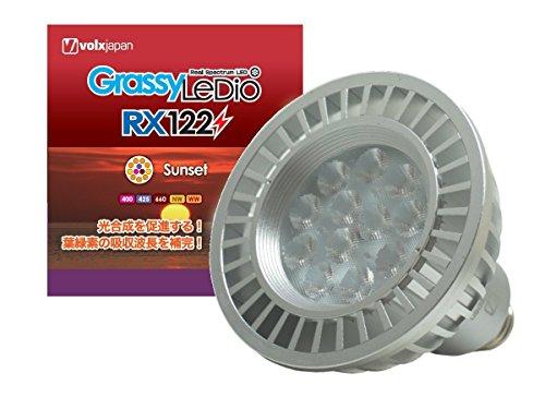 ボルクスジャパン GrassyLeDio(グラッシーレディオ) RX122 サンセット