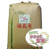 【玄米】福島県産コシヒカリ 30kg 玄米 平成28年産 (調整済み玄米30kg)【会津CROPS】【グラントマト】