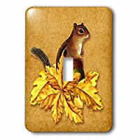 3drose LSP _ 212409_ 1Sweet Squirrel with Acorn and Golden Oak Leaves Autumn単一の切り替えスイッチ