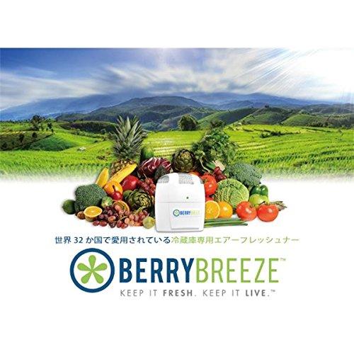 冷蔵庫専用空気清浄機 BerryBreeze BB001 家電 季節家電(冷暖房 空調) 除湿器 加湿器 空気清浄機 空気清浄機 [並行輸入品]