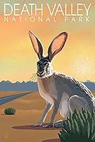 デスバレー国立公園、カリフォルニア–Lithograph–Jackrabbit 9 x 12 Art Print LANT-81448-9x12