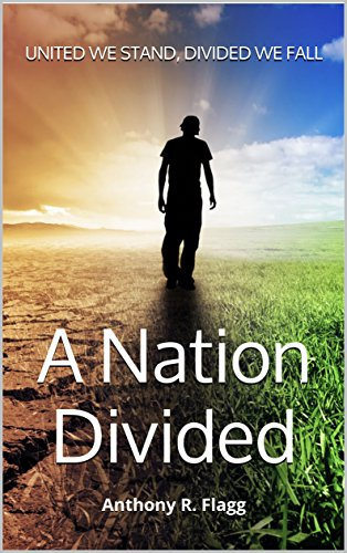 A Nation Divided: United we stand, Divided we fall (English Edition)